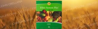 4life fiber system cleansing