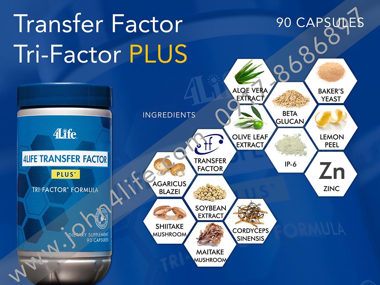 transfer factor plus, tf plus, immune booster, mushroom, cordyceps, zinc, infection